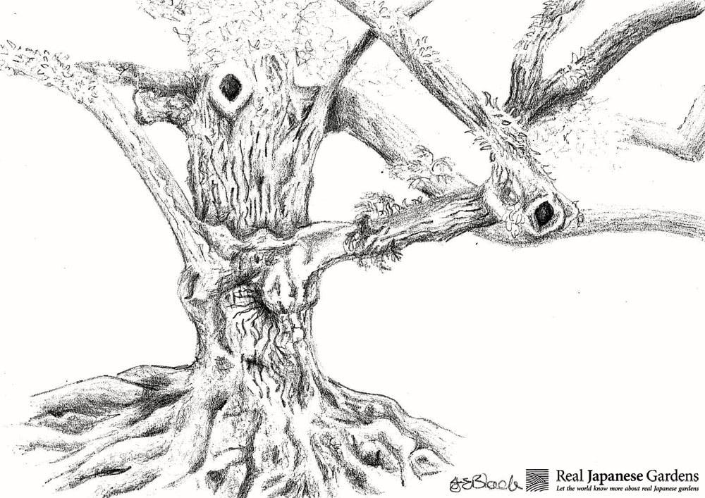 tree2_logo