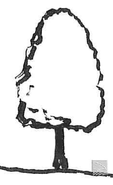 bell tree shape