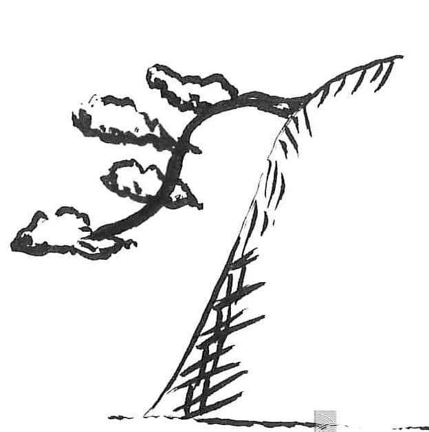 kengai 懸崖 tree shape